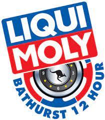 Mount Panorama Bathurst Hour Endurance Race Logo